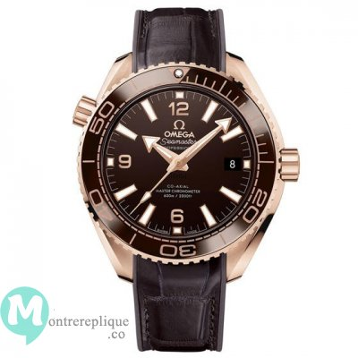 Omega Seamaster usine Ocean 600M Chocolate 215.63.40.20.13.001
